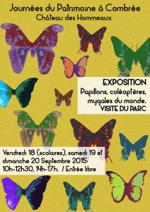 Poster papillons A4 moyenne def